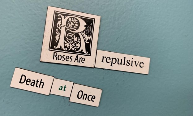 """Magnetic poetry on a blue background that says: """"Roses are repulsive / Death at once."""""""